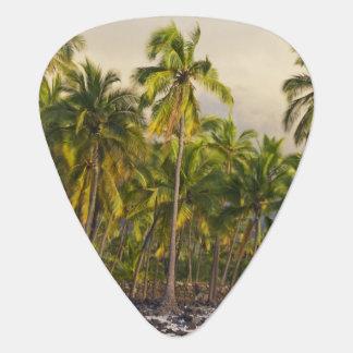 Palmiers, O2 national de Pu'uhonua de parc Onglet De Guitare