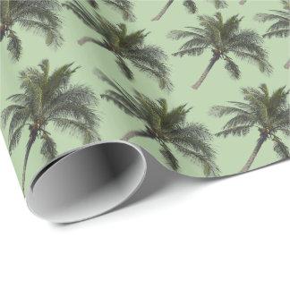 Palmiers Papier Cadeau