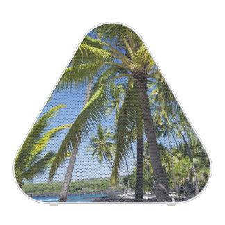 Palmiers, parc historique national Pu'uhonua o Haut-parleur Bluetooth