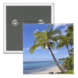 Palmiers sur la plage en Hawaï Pin's