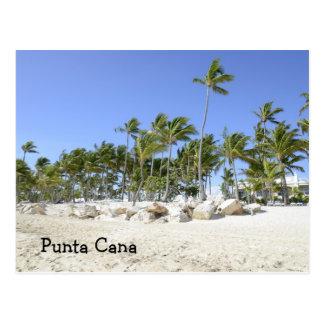 palmiers sur une plage tropicale carte postale