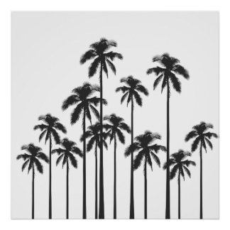 Palmiers tropicaux exotiques noirs et blancs poster