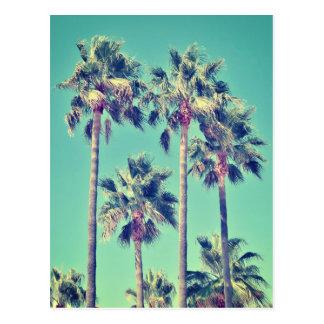Palmiers vintages tropicaux carte postale