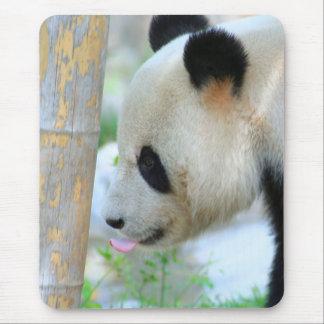 Panda20170502_by_JAMFoto Tapis De Souris