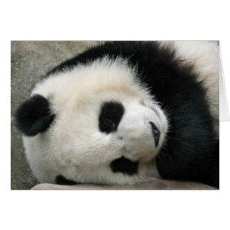 Panda Carte De Vœux