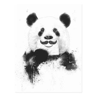 Panda drôle carte postale