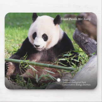 Panda géant Mei Xiang Tapis De Souris