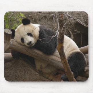 Panda géant Mousepad d'ours panda et de bébé Tapis De Souris