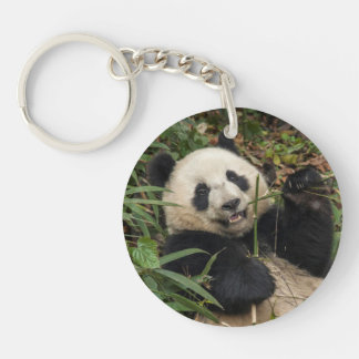 Panda mignon mangeant le bambou porte-clefs
