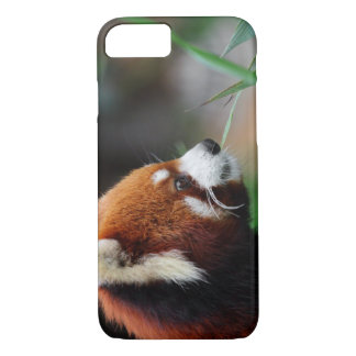 Panda rouge coque iPhone 7