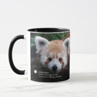 Panda rouge de Smithsonien | Tasses