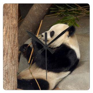 PandaM015 Horloge Carrée