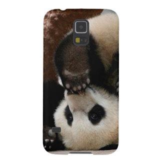 Pandas de bébé jouant - panda mignon de panda de coques pour galaxy s5