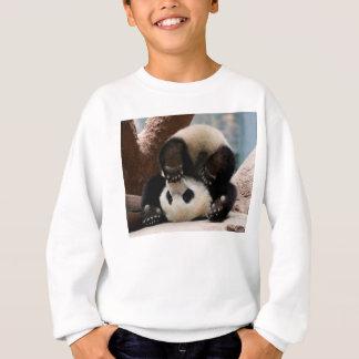 Pandas de bébé jouant - panda mignon de panda de sweatshirt
