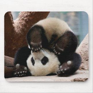 Pandas de bébé jouant - panda mignon de panda de tapis de souris
