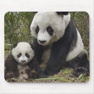pandas tapis de souris