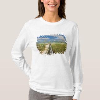 Paniculata d'Uniola d'avoine de mer) s'élevant par T-shirt