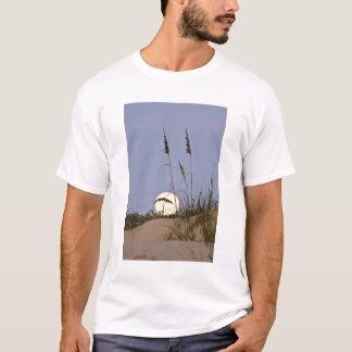 Paniculata d'Uniola d'avoine de mer) s'élevant sur T-shirt