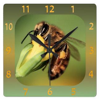 Panier en gros plan de pollen d'abeille horloge carrée