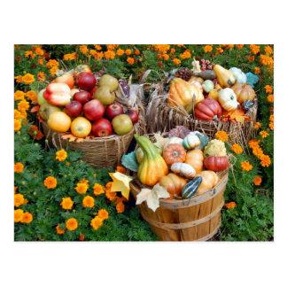 Paniers des fruits et des légumes d'automne carte postale