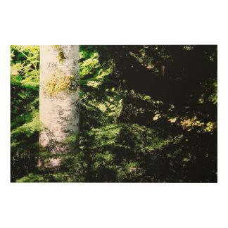 Panneau en bois d'art de lueur de forêt