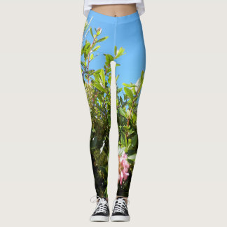 Pantalon vert de yoga de Bluesky Leggings