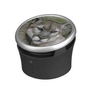 Panthère de la Floride, coryi de concolor de Felis Haut-parleur Bluetooth