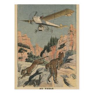 Panthères de chasse d'un avion dans le Texas Cartes Postales
