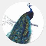 Paon coloré élégant bleu vintage autocollant