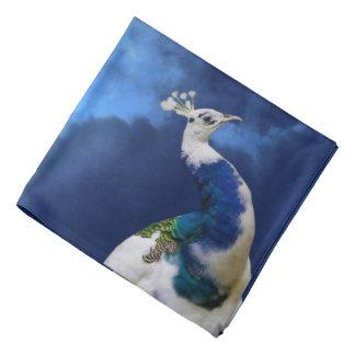 Paon et ciel bleu bandana