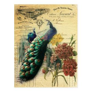 paon vintage girly de mode de Paris floral Carte Postale