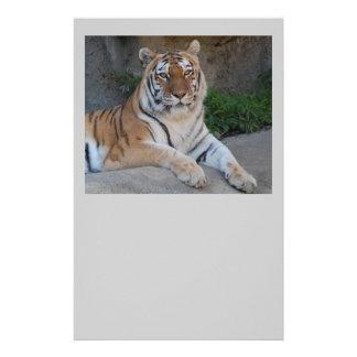 Papeterie Amour de tigre