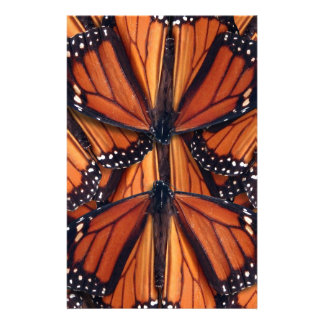 Papeterie art de papillon de monarque