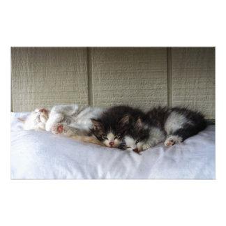 Papeterie Beautés de sommeil