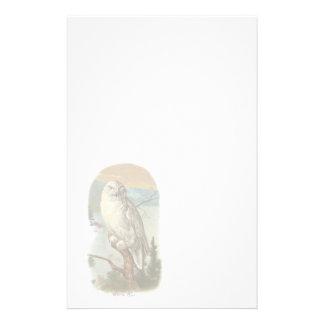 Papeterie blanche vintage de hibou