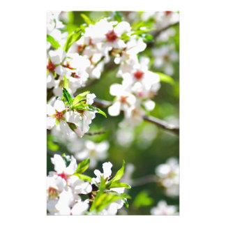 Papeterie Branches fleurissantes de l'arbre fruitier