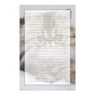 Papeterie Chat persan, catus de Felis, chat tigré de Brown,