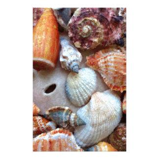 Papeterie Coquillages par le bord de la mer