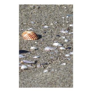 Papeterie Coquillages sur le sable. Arrière - plan de plage