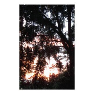 Papeterie coucher du soleil d'or en novembre par des arbres