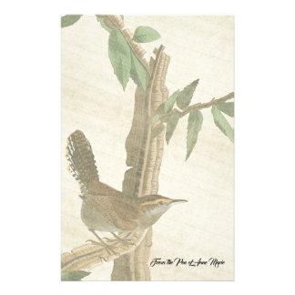 Papeterie d'animal de faune d'oiseau de roitelet