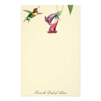 Papeterie d'animaux de faune d'oiseaux de colibri