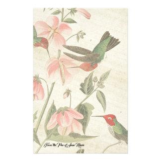 Papeterie de faune d'oiseaux de colibri d'Audubon