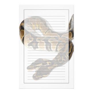 Papeterie Deux ont dirigé le python royal ou le python de