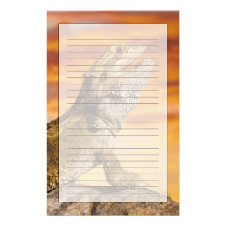 Papeterie Dragon barbu (Pogona Vitticeps) sur la roche,