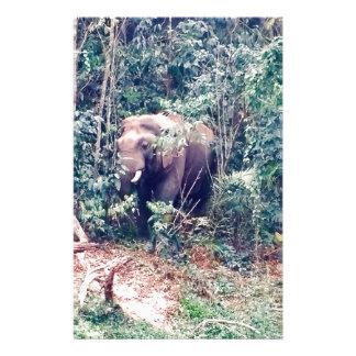 Papeterie Éléphant en Thaïlande