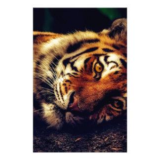 Papeterie Faune animale de tigre reposant le macro plan