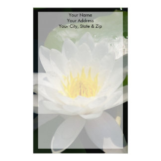 Papeterie Fleur de Lotus blanc Waterllly