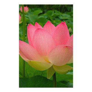 Papeterie Fleur de Lotus sacré