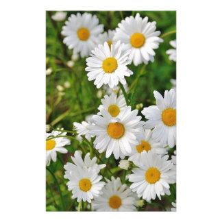 Papeterie Fleur de marguerite blanche